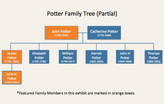 Potter Family Tree
